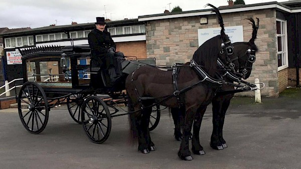 We are able to arrange a traditional Hearse pulled by a black horse.